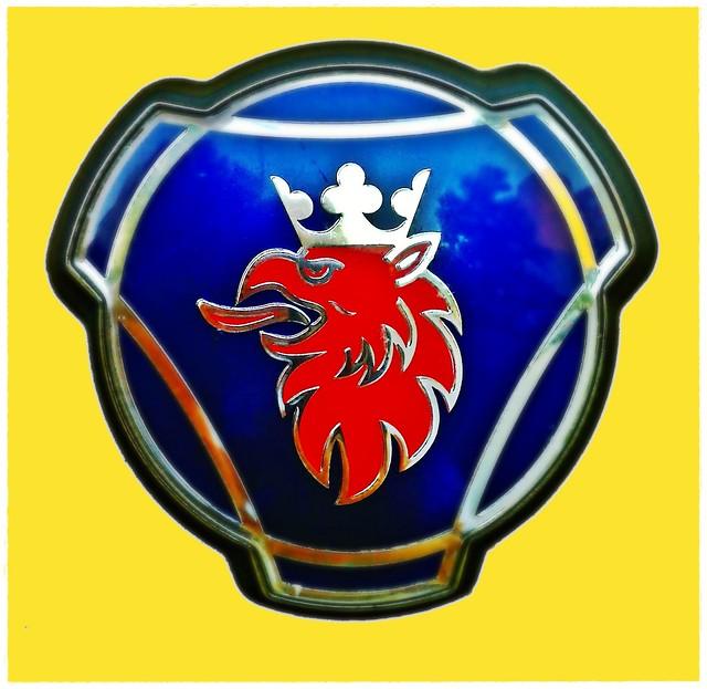 5873632207 f3dd55645c z jpgLion With Crown Car Logo