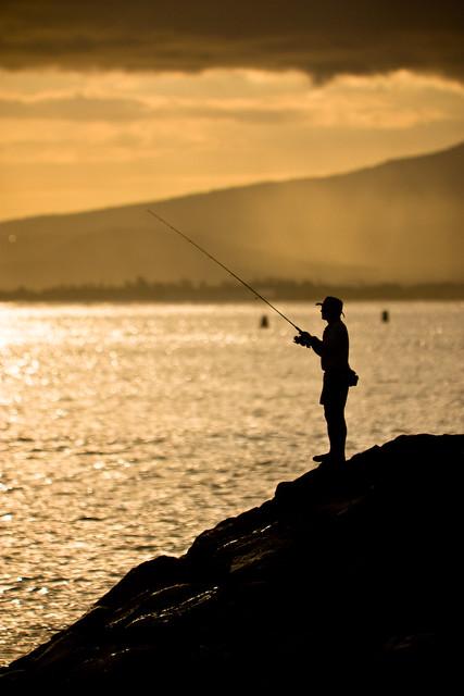 Kaka'ako Fisherman