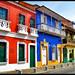 Multicolor colonial