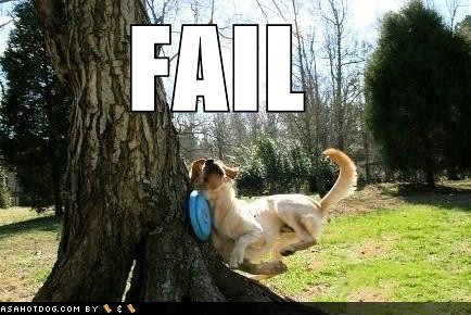 Funny Dog Food Quotes