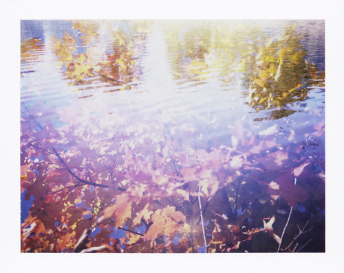Autumn Ripple