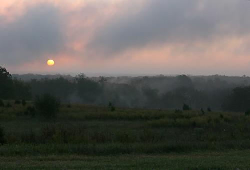 park mist fog sunrise dawn missouri leessummit pottberg pottbergpark