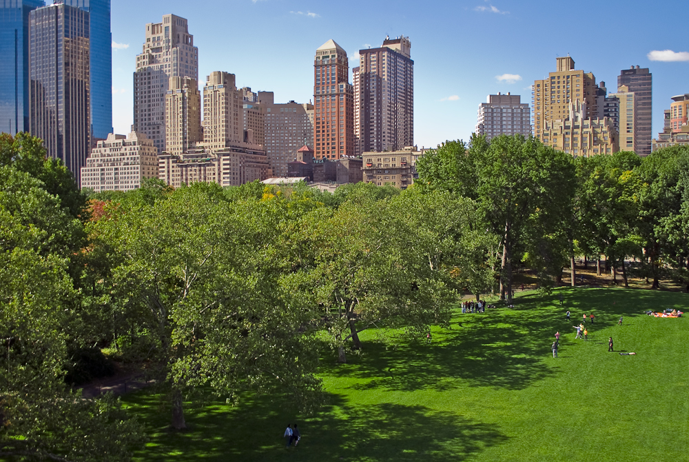 Shady South Edge of Sheep Meadow