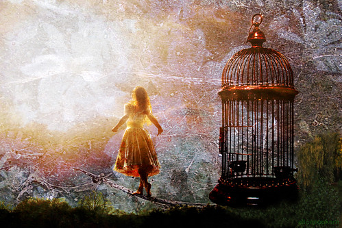 ~  free  ~