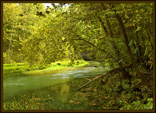 trees nature water landscape spring scenic missouri hahatonka