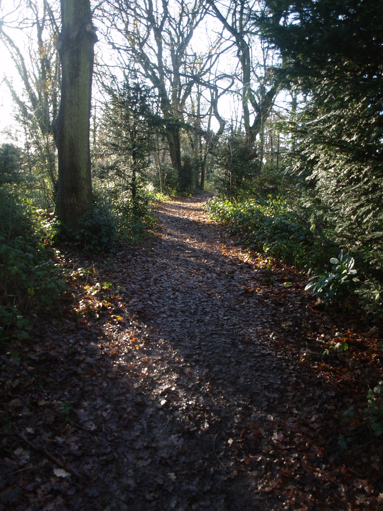 December 17, 2008: Riddlesdown to Kingswood