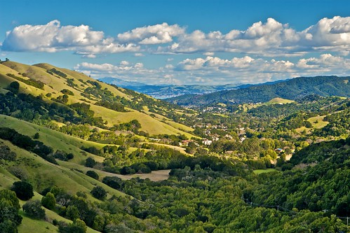 Lucas Valley - Marin County