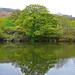 Small photo of Reflections in Ilkley Tarn