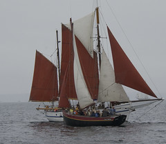 ship(0.0), galway hooker(0.0), windjammer(0.0), galeas(0.0), barquentine(0.0), caravel(0.0), tall ship(0.0), scow(0.0), dinghy sailing(0.0), sail(1.0), sailboat(1.0), sailing ship(1.0), vehicle(1.0), sailing(1.0), sea(1.0), thames sailing barge(1.0), mast(1.0), lugger(1.0), sloop-of-war(1.0), watercraft(1.0), boat(1.0),