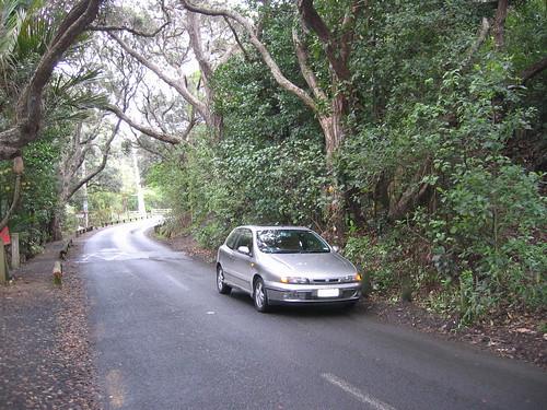 Fiat Bravo HGT at Piha