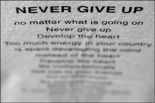 day 222 : 365 wednesday july 2 • never give up