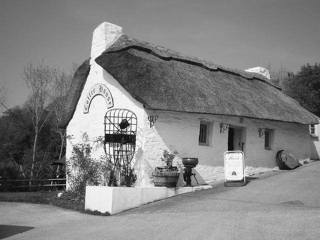 Cenarth Thatched Cottage