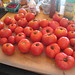 Five gallons of tomatoes