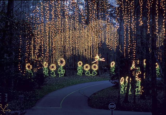 Fantasy In Lights At Callaway Gardens Flickr Photo Sharing