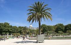 Paris 2006 - 2009