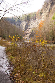 Taughannock Falls  :: The walk back to the Falls