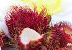flower(0.0), plant(0.0), food(0.0), rambutan(1.0), produce(1.0), fruit(1.0),