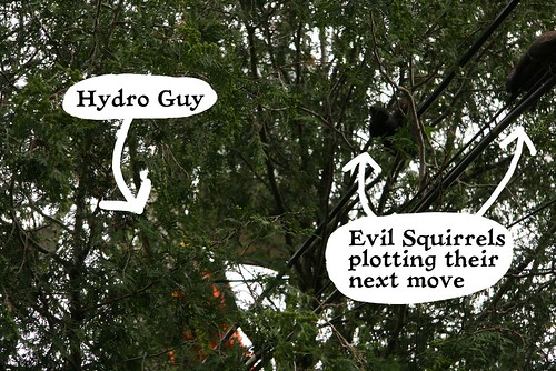Hydro Guy menaced by squirrels