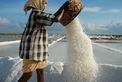 Woman working in a salt pan (uppalam in Tamil). Tuticorin.