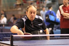 individual sports, table tennis, sports, competition event, ball game, racquet sport, para table tennis,