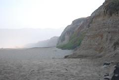 Foggy Bluffs