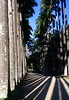 Jardim Botânico - 200 anos