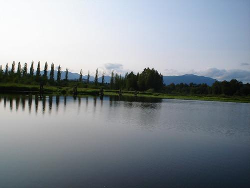 Burnaby Lake Park