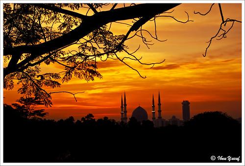 trees sunset fab orange clouds sundown branches silhouettes malaysia bluemosque a200 selangor supershot bej sonydslr platinumphoto anawesomeshot ibnuyusuf naturewatcher holysunset theperfectphotographer natureselegantshots cityofshahalam mysonia