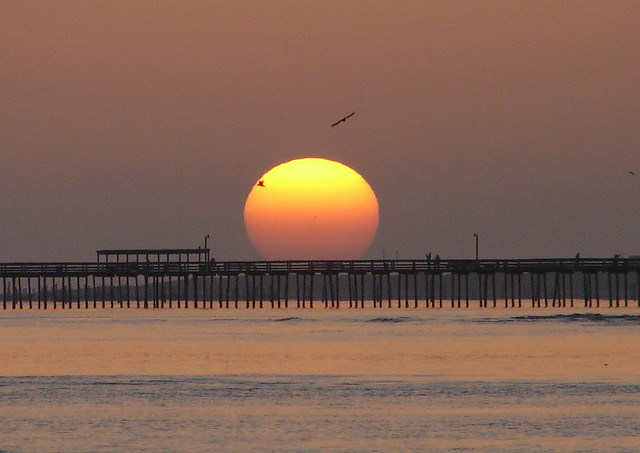 Lynnhaven fishing pier at sunrise with gulls flickr for Lynnhaven fishing pier