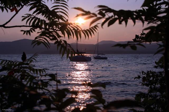 Summer Eve