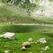 Mori Lake