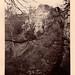 Hawthornden 1878