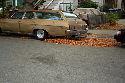 Station Wagon and Leaves