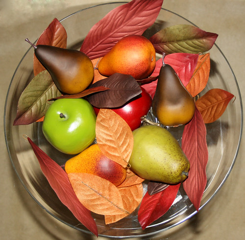 Squircle - Fall Fruits & Leaves
