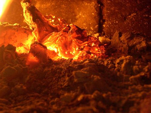 macro fire photography dehradun fri nagpur ankita asthana vnit