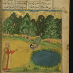 Illuminated Manuscript, Collection of poems (masnavi), A wise man and a peacock plucking out its feathers not to be attractive to people, Walters Art Museum Ms. W.626, fol. 220b