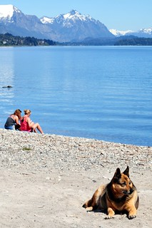 Doggy beach gard @ Bariloche