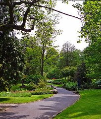 Path in Lister Park