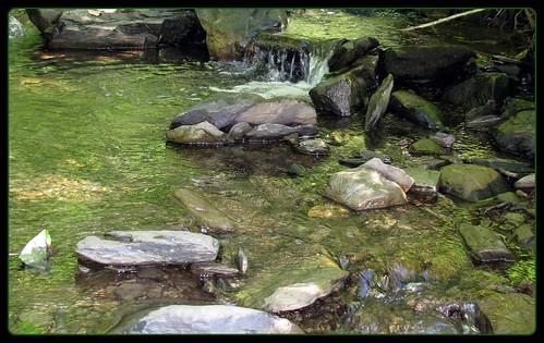 landscape paysage goldenmix platinumheartaward wonderfulworldmix mallmixstaraward blogfkchs