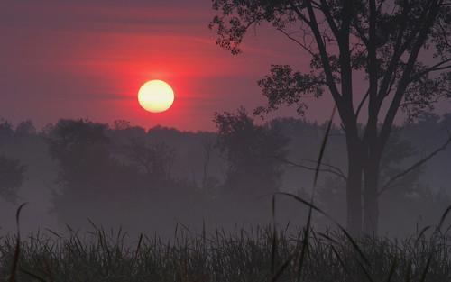 morning autumn sun fog sunrise wow dawn daybreak d60 platinumphoto aplusphoto