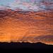 Small photo of Brilliant Desert Sunrise