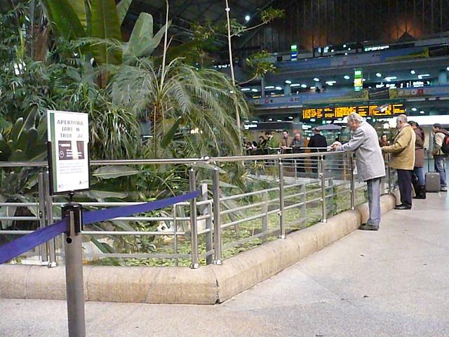 Atocha atocha jardin tropical by cesvlc flickr photo sharing - Jardin tropical atocha ...