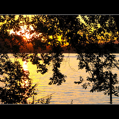 trees sunset canon id idaho cda coeurdalene silverbeach lakecoeurdalene tubbshill canons5 silverbeachmarina jakedonahue coeurdalenelakedrive