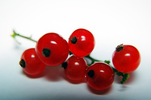 Ribes - Red fruits