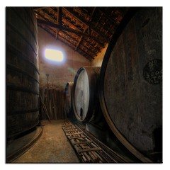 Old tonels. (Vertorama) #4 Farm