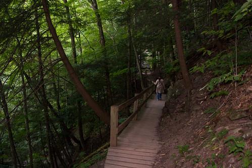 statepark trip usa turkey pennsylvania path august pa 2008 40d canon40d leonardharrisonstatepark trail2008augustcanon pagrandcanyonkumars