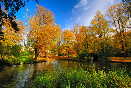 autumn lund fall landscape skåne sweden östervångsskolan