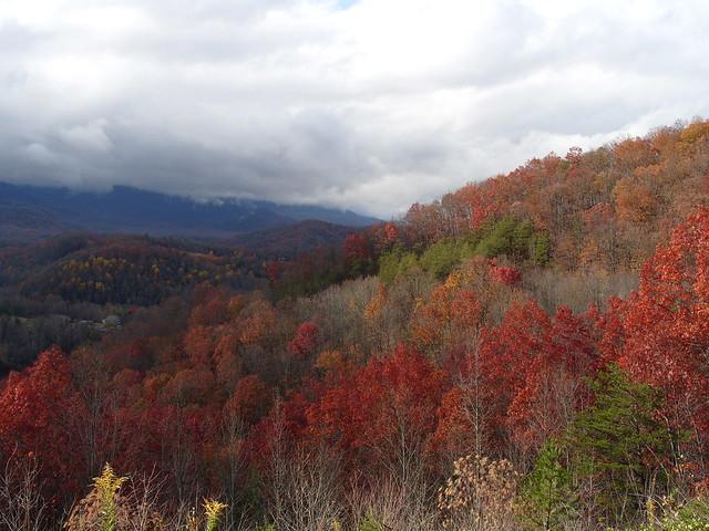 2008 Fall Great Smoky Mountains, TN