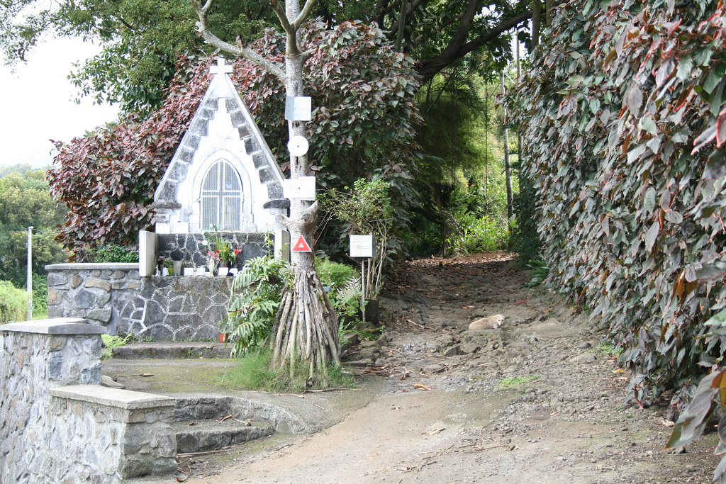 Schrein - La Reunion