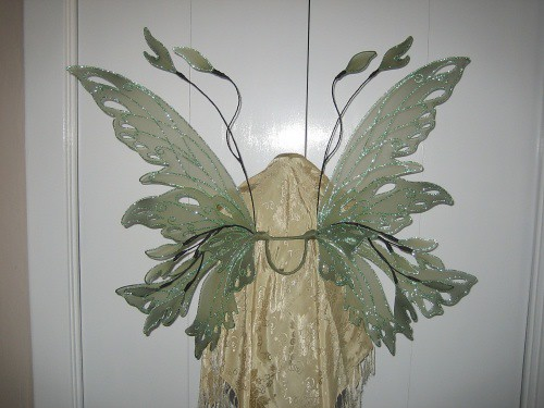 Green Fairy Wings back view Flickr Photo Sharing